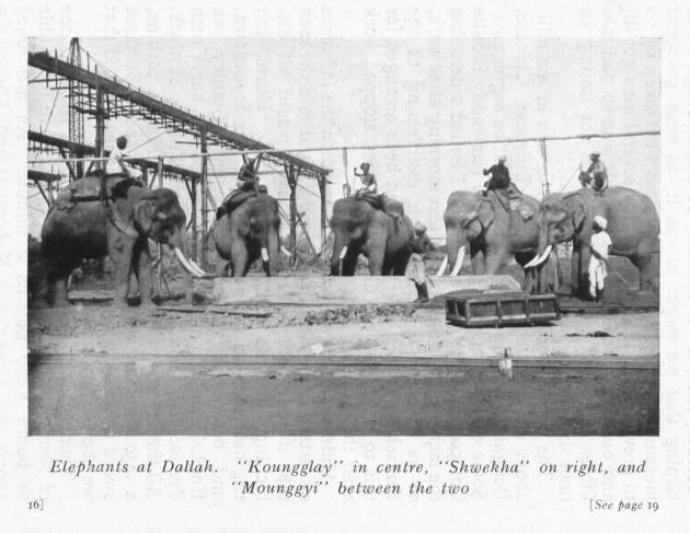 Hugh Nesbit, Experiences of a Jungle-Wallah (1910), opposite p.16