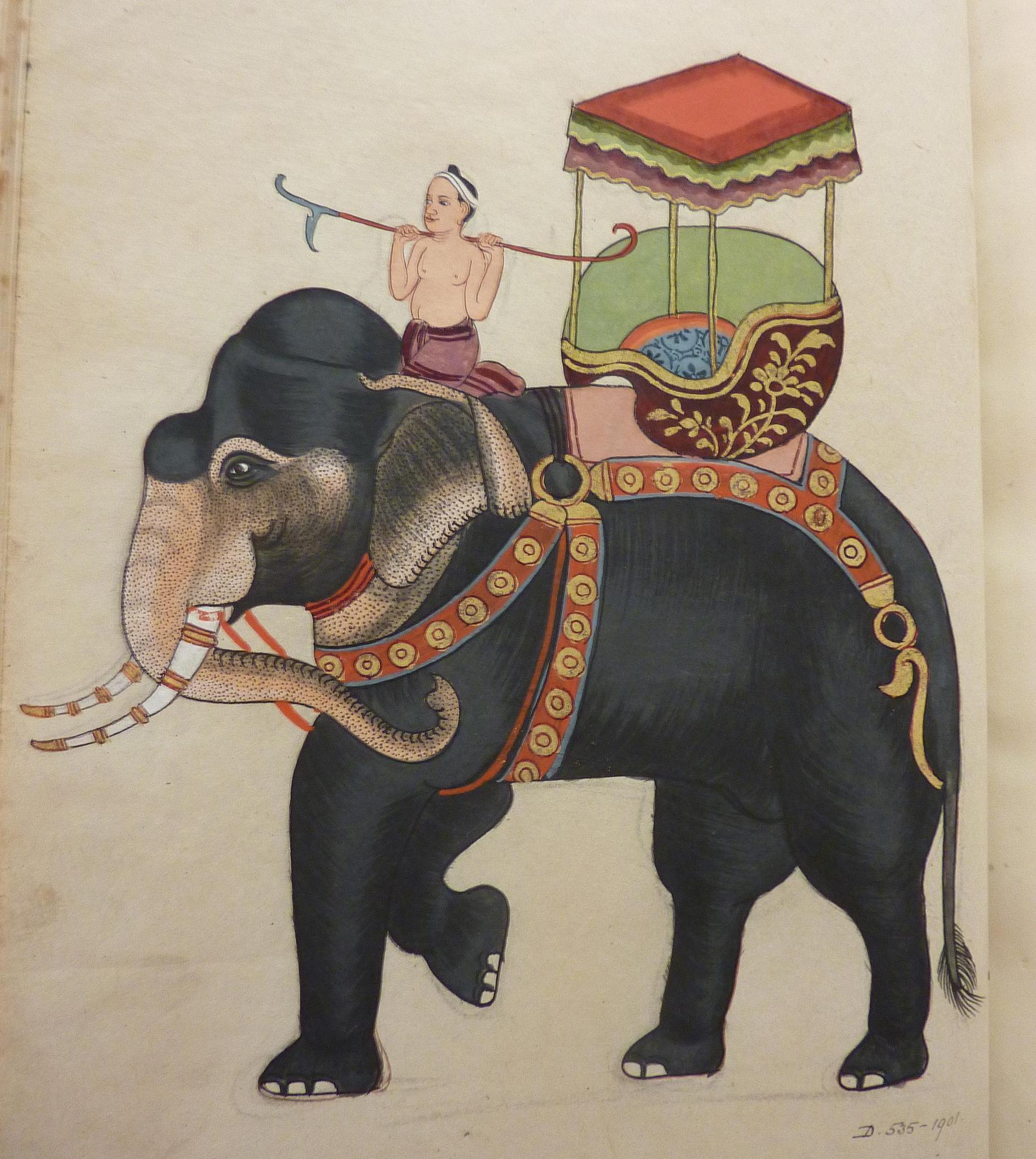 d-535-1901-the-kings-girls-elephant.jpg